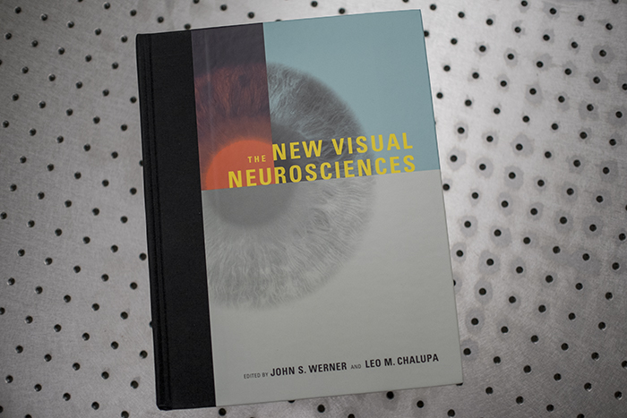 New Visual Neurosciences