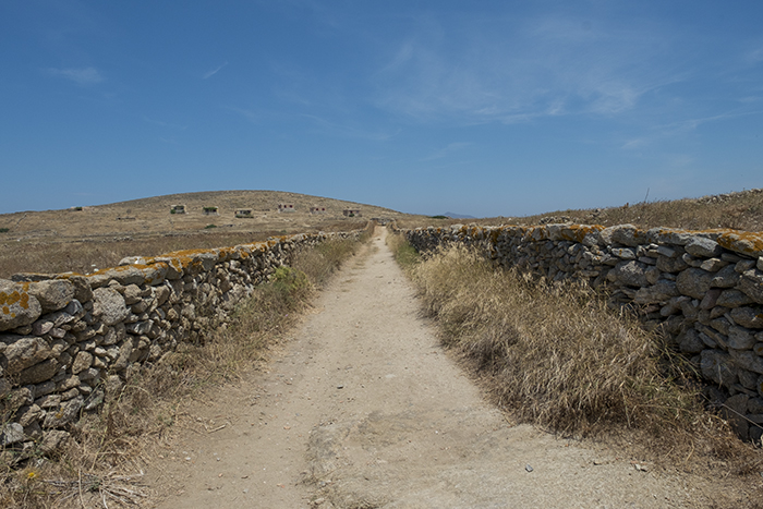 Road on Delos