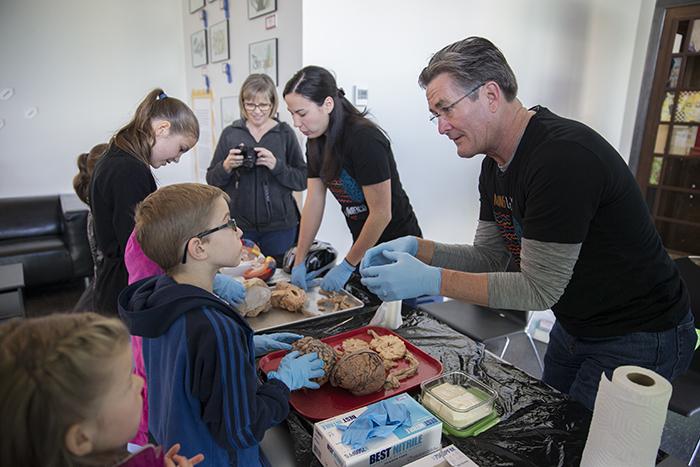 Teaching brains_