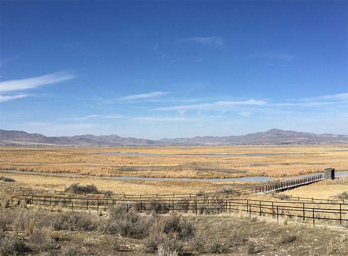 Salt Creek Waterfowl Management Area